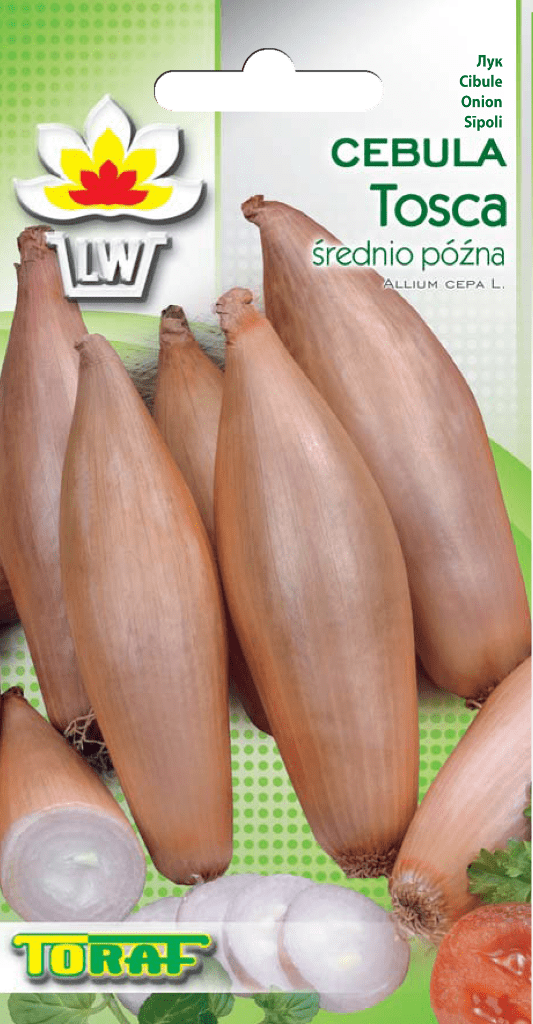 cebula tosca-LW-692-16_F