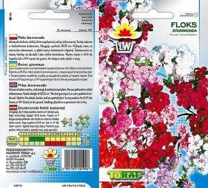 Floks-DRUMONDA-mieszanka
