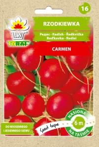 Rzodkiewka-Carmen---Tasma-1