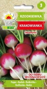 Rzodkiewka-KRAKOWIANKA
