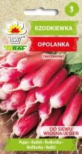 Rzodkiewka-Opolanka