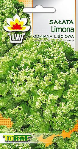 Salata-lisciowa-Limona