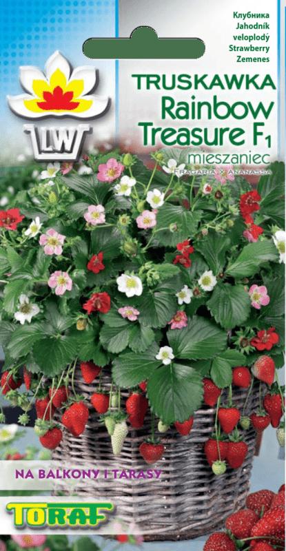 truskawka rainbow treasure-LW-728-16_F