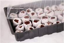 Vefi---Miniszklarenka-36x22-cm-z-krazkami-kokosowymi