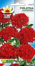 Firletka-Chalcedonska-czerwona