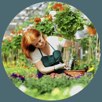Ciekawostki Ogrodnicze