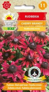 Rudbekia Cherry Brandy