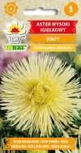 Aster igiełkowy wysoki żółty