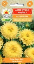 Aster książęcy wysoki Aleksandra żółty