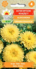 aster aleksandra