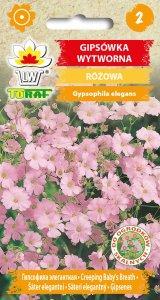 Gipsówka wytworna - różowa