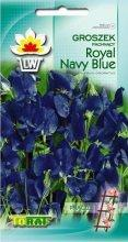 groszek blue