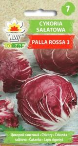 cykoria palla rosa LW 621 15