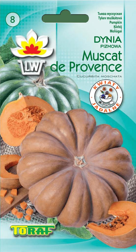 dynia muscat de provance-LW-697-16-rola_F