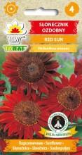Słonecznik ozdobny Red Sun
