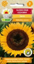 Słonecznik ozdobny Taiyo