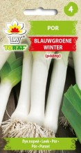 Por Blauwgroene Winter