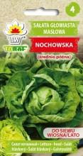 Sałata głowiasta masłowa Nochowska