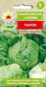 Salata krucha lodowa Traper