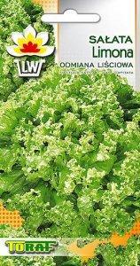 Salata lisciowa Limona