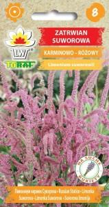 Zatrwian suworowa - karminowo-różowy