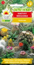 Kaktusy Mieszanka