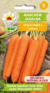 Marchew Berlicumer 2