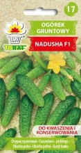 Ogórek gruntowy Nadusha F1