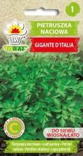 Pietruszka naciowa Gigante D'Italia