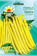 fasola elektra-LW-610-13-rola_F