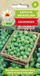 Kapusta Brukselska Groninger