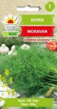 Koper Moravan