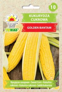 kukurydza golden bantam tyl