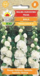 Malwa ogrodowa pełna biała