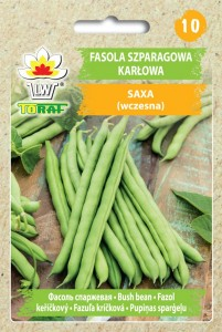 Fasola szparagowa karłowa Saxa