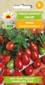 Pomidor gruntowy karłowy Denar