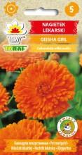 Nagietek lekarski GEISHA GIRL